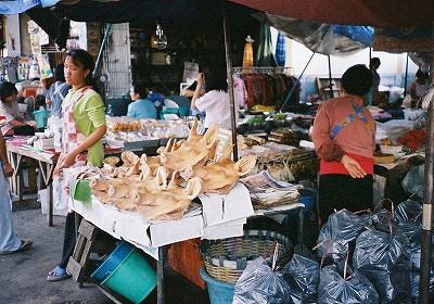 お店の顔はブタの顔;東北タイ