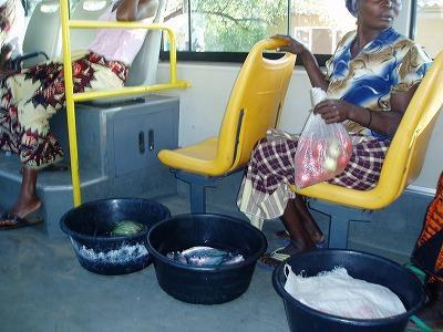 マイバックは洗面器�-�モザンビーク